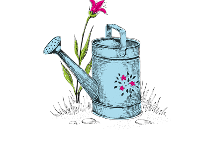 A hand drawn watering can with a pink flower behind it